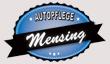 autopflege-mensing